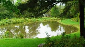 Image of fishing pond